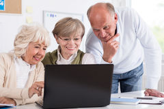 Senior businesspeople with laptop Royalty Free Stock Photo
