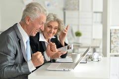Senior businesspeople working Royalty Free Stock Photos