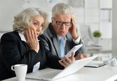 Senior businesspeople working Royalty Free Stock Image