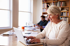 Senior Businesswoman Using Laptop At Desk In Busy Office Royalty Free Stock Image