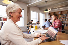 Senior Businesswoman Using Laptop At Desk In Busy Office Stock Photos
