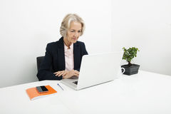 Senior businesswoman using laptop at desk in office Stock Photos