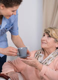 Senior care assistant at work Royalty Free Stock Images