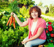 Senior with carrot Royalty Free Stock Images
