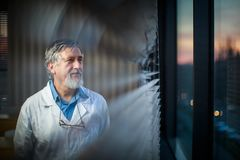 Senior chemistry professor by a classroom window. Looking pensive shallow DOF; color toned image stock images