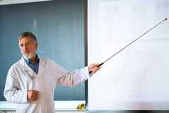 Senior chemistry professor giving a lecture Stock Photos