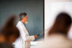 Senior chemistry professor giving a lecture. In front of classroom full of students (shallow DOF; color toned image Stock Image