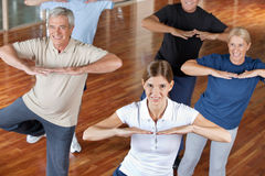 Senior citizens doing dance Royalty Free Stock Photos