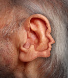 Senior Communication. And a health care and medical issues concept for the voice of the elderly and symbol of grey vote power for the rights of old adults who Stock Photography