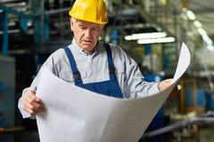 Senior Construction Worker reading Floor Plans. Portrait of senior man looking at floor plans in workshop of modern factory royalty free stock image