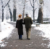 Senior couple. Walking in park at winter stock photo