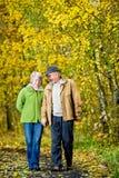 Senior couple. Walking in park Stock Photo