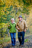 Senior couple. Walking in park Royalty Free Stock Images