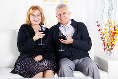 Senior couple. Happy Senior couple in home interior enjoying in glass of wine Royalty Free Stock Photography