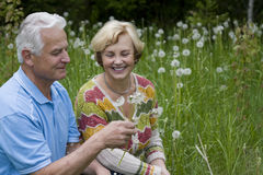 Senior couple - 42 years in love Stock Photography