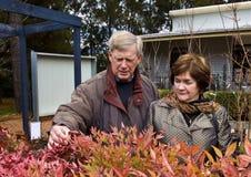 Senior couple admiring plants Stock Image