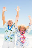 Senior couple with arms up on the beach Stock Photos
