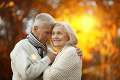 Senior couple in autumn park Stock Image