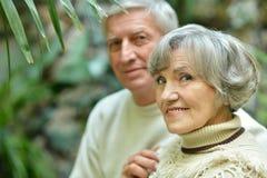 Senior couple in autumn park Royalty Free Stock Photos