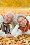 Senior couple in autumn park Stock Images