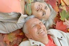 Senior couple in autumn park Stock Image