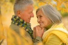 Senior couple in autumn park. Portrait of a senior couple resting at autumn park Stock Photo