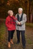 Senior couple during autumn royalty free stock photography