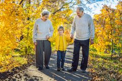 Senior couple with baby grandson in the autumn park. Great-grandmother, great-grandfather and great-grandson stock photos
