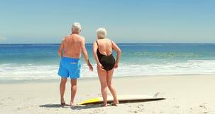 Senior couple at the beach. Rear view of senior couple at the beach stock footage