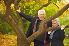 Senior couple behind a tree Royalty Free Stock Image