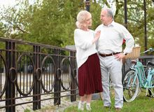 Senior couple with bicycles standing near fence. In park Royalty Free Stock Photography