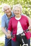 Senior couple with bike Stock Image