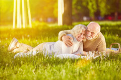 Senior couple on a blanket on a meadow. Happy senior couple laying on a blanket on a meadow in summer Stock Photos