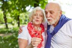 Senior couple blowing dandelion seeds Royalty Free Stock Photos