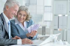 Senior couple of businessmen. Portrait of a senior couple of businessmen, counting money Royalty Free Stock Photos