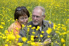 Senior couple in a buttercup field. Lovely senior couple enjoying the sun in a green grass field full of buttercups royalty free stock photo