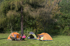Senior couple at camping Royalty Free Stock Images