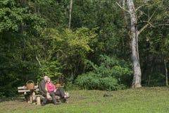 Senior couple at camping Royalty Free Stock Photo