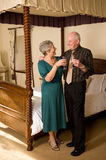 Senior couple celebrating Royalty Free Stock Photos