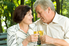 Senior couple celebrating Royalty Free Stock Photo