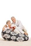 Senior couple celebrating holiday Royalty Free Stock Image