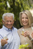 Senior Couple Celebrating Together Royalty Free Stock Photography