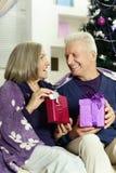 Senior couple celibrating Christmas Stock Images