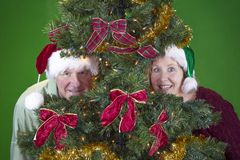 Senior couple in Christmas tree royalty free stock photo
