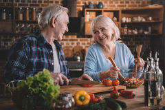 Senior couple cooking vegetable salad together royalty free stock images