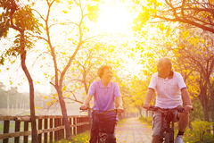 Senior couple on cycle ride in the park royalty free stock images