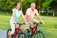 Senior couple cycling. Happy elderly senior couple cycling in park Royalty Free Stock Photo
