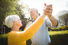Senior couple dancing in park Royalty Free Stock Photo