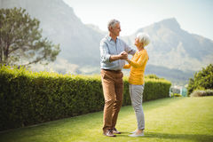 Senior couple dancing in park Royalty Free Stock Images