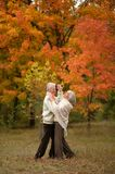 Senior couple dancing  in park Stock Images